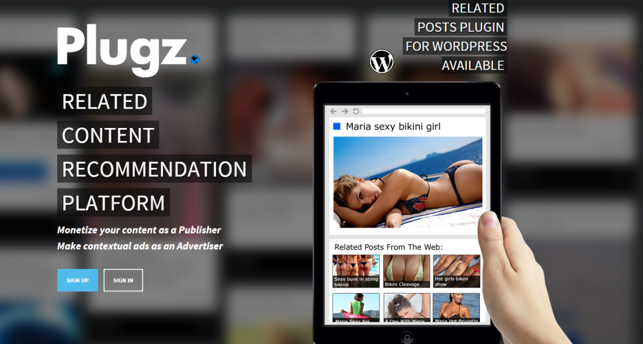 Adult Web Site Marketing 7
