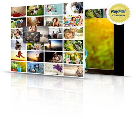Web Dorado Photo Gallery Plugin